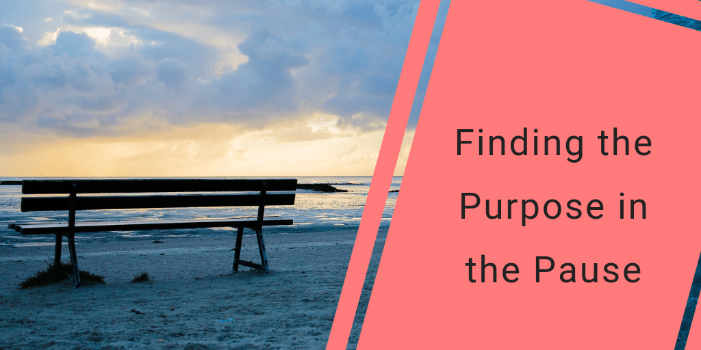 Finding purpose pause