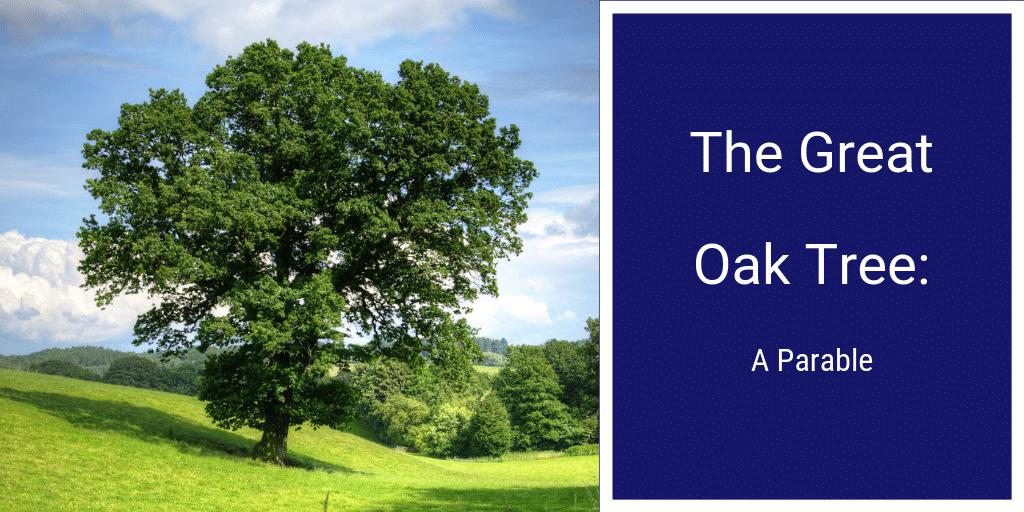 9.11.18 The Great Oak Tree